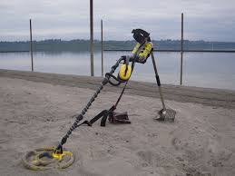 Beach hunter 300 metal detector cheap